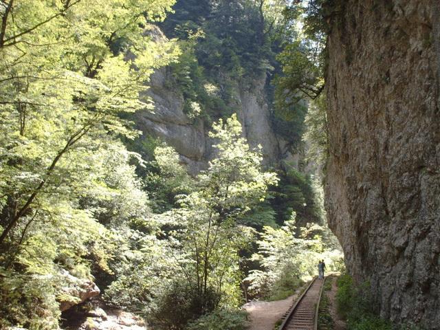 IMAG0156 Гуамское ущелье