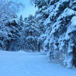 IMG 5036.JPGкопия 150x150 Зима на плато Лаго Наки