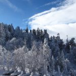 IMG 5046.JPGкопия 150x150 Зима на плато Лаго Наки