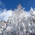 IMG 5050.JPGкопия 150x150 Зима на плато Лаго Наки