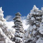 IMG 5053.JPGкопия 150x150 Зима на плато Лаго Наки