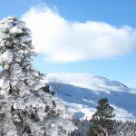 IMG 5066.JPGкопия 150x150 Зима на плато Лаго Наки