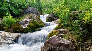 река Армянка 300x169