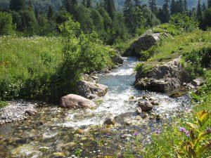 река Безымянка 300x225