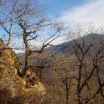 IMG 20161126 134437 150x150 Гузерипль: прогулка на Казачью