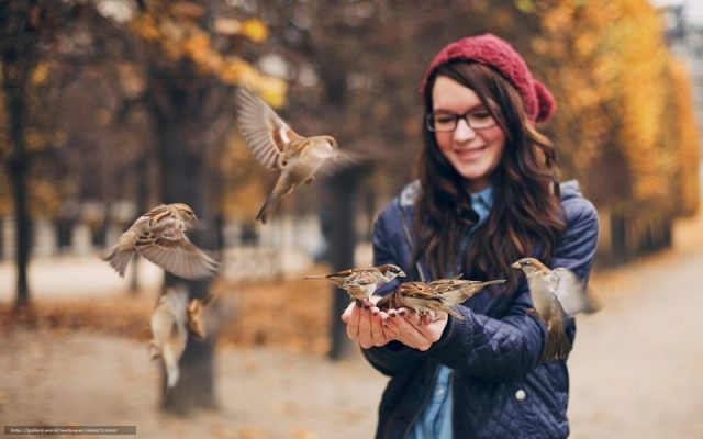 birdday28 640x400 Птицы и дети