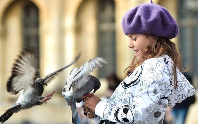 birdday42 640x400 Птицы и дети