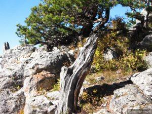 Азишский перевал 300x225 Азишский перевал